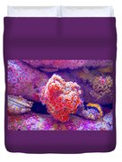 Anemones In Monterey Aquarium-california   Duvet Cover