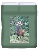 Angry Stag Duvet Cover