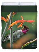Anna's Hummingbird 1 Duvet Cover