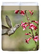 Anna's Hummingbird And The Penstemon  Duvet Cover