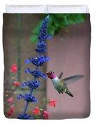 Anna's Hummingbird Feasting At Blue Salvia Duvet Cover