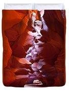 Antelope 19 Duvet Cover