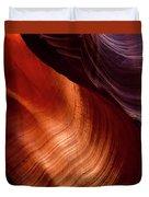Antelope Curves Duvet Cover