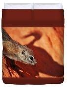 Antelope Ground Squirrel II Duvet Cover