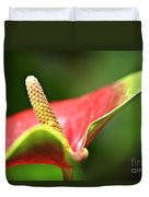 Anthurium Blossom Duvet Cover