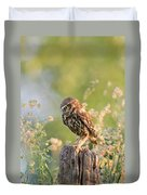Anticipation - Little Owl Staring At Its Prey Duvet Cover