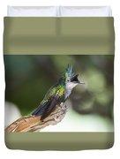 Antillean Crested Hummingbird On Stick Duvet Cover