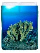 Antler Coral Duvet Cover