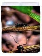 Ants Adventure Duvet Cover by Bob Orsillo