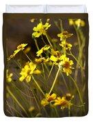 Anza Borrego Desert Sunflowers 1 Duvet Cover