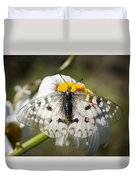 Apollo Butterfly Duvet Cover