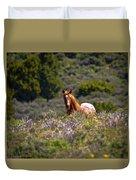 Appaloosa Mustang Horse Duvet Cover