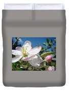 Apple Blossoms Art Prints Canvas Blue Sky Pink White Blossoms Duvet Cover