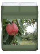 Apples 101010 Duvet Cover