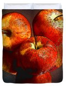 Apples And Mirrors Duvet Cover by Paul Wear