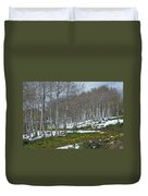 Approaching Spring In The Aspen Forest Duvet Cover by Cascade Colors