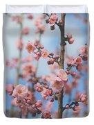 Apricot Blossom Duvet Cover