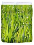 April Dewdrop Fairylights Duvet Cover