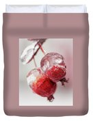 April Ice Storm Apples Duvet Cover
