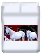 Arab Horses At Home, Behind Their Fence   Duvet Cover