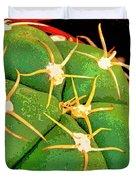 Arachnids Duvet Cover