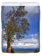 Arbutus Tree At Rathtrevor Beach British Columbia Duvet Cover