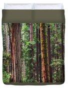 Arcata Forest Duvet Cover