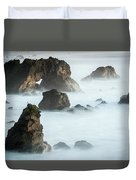 Arched Rock Sea Bird Duvet Cover