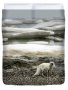 Arctic Fox By Frozen Ocean Duvet Cover