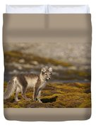 Arctic Fox In Tundra Duvet Cover