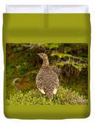 Arctic Willow Ptarmigan Duvet Cover
