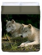 Arctic Wolf Pictures 1268 Duvet Cover