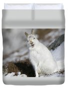 Are You Kidding? - Mountain Hare #14 Duvet Cover