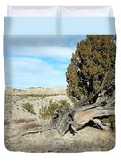 Arid Beauty Duvet Cover