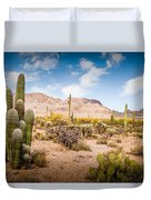 Arizona Desert #3 Duvet Cover