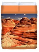 Arizona Desert Landscape Duvet Cover