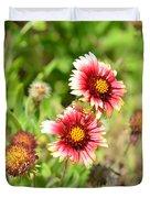 Arizona Sun Blanket Flowers Duvet Cover