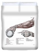 Arm, Anatomy, Salvage Illustration, 1812 Duvet Cover