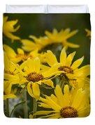 Arrowleaf Balsamroot Bouquet Duvet Cover