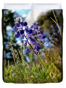 Arroyo Lupine Four Duvet Cover