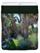 Arthur B Ripley Desert Woodland State Park Duvet Cover