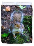 Glasgow Squirrel Duvet Cover