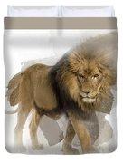 Lion Lion Lion Duvet Cover