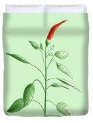 Hot Chili Pepper Plant Botanical Illustration Duvet Cover