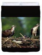 Osprey Family Night Duvet Cover