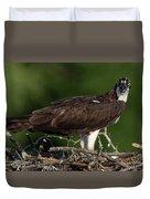 Osprey Portrait Duvet Cover