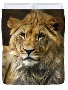 The Young Lion Duvet Cover