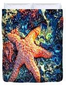 Yachats Oregon - Sea Star Duvet Cover