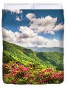 Asheville Nc Blue Ridge Parkway Spring Flowers Scenic Landscape Duvet Cover