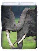 Asian Elephant Greeting Duvet Cover